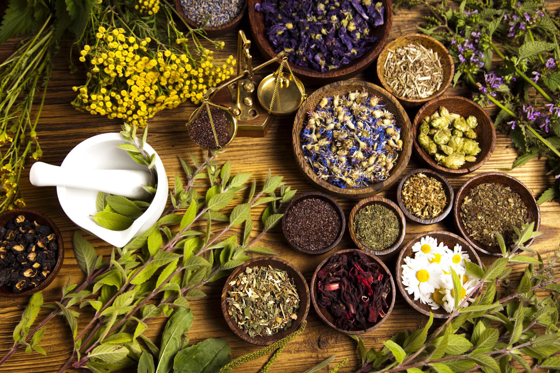 Faça a sua própria horta medicinal hidropónica !