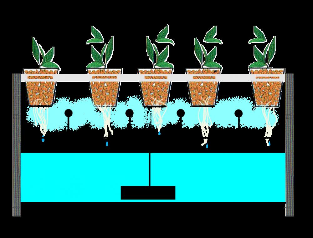 Sistemas Aeroponia