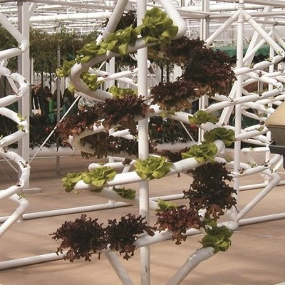 Introdução à agricultura vertical