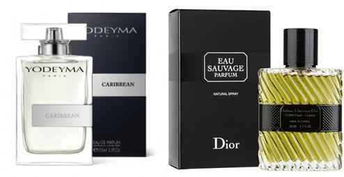 Perfume Caribbean (equiv. Sauvage - Dior)