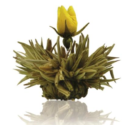 Flor de Chá Blossom Rain