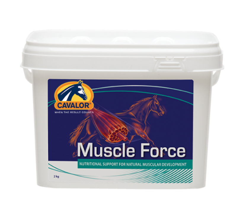 Muscle Force, Cavalor