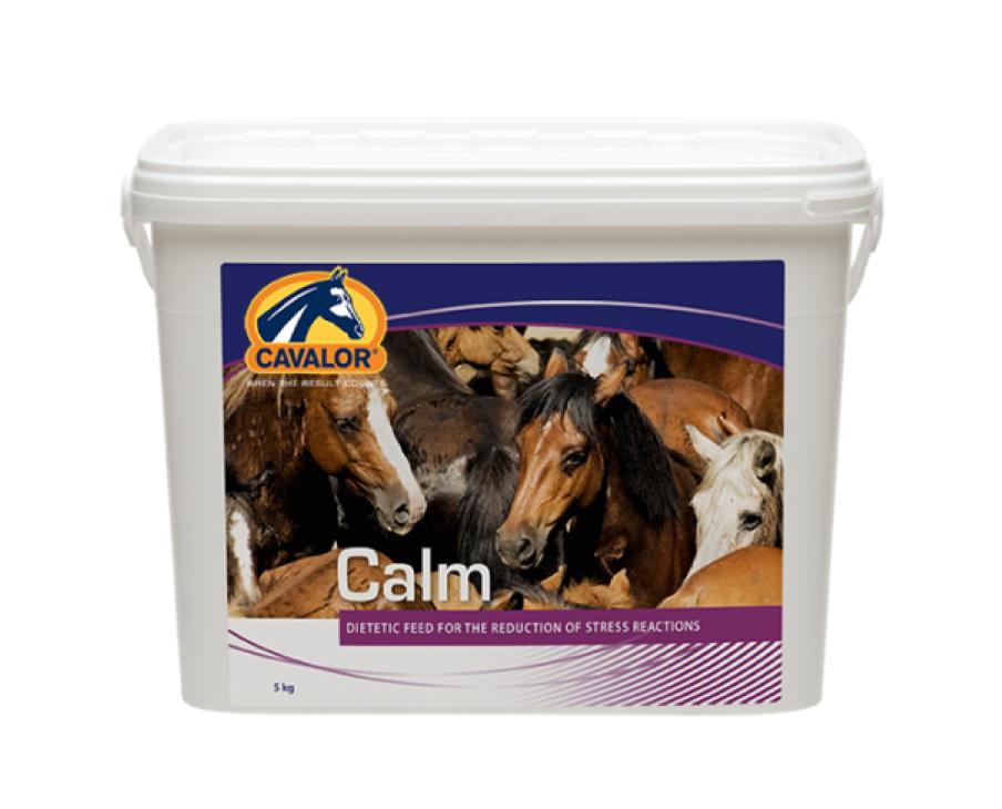 Calm Cavalor