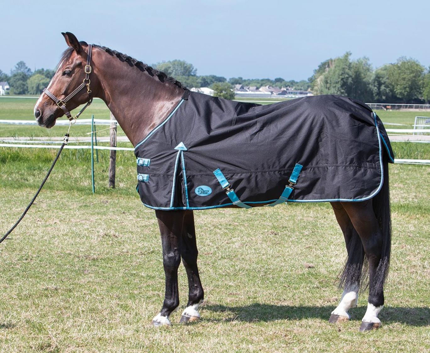 Cobrejão Org - impermeavel, Harry´s Horse