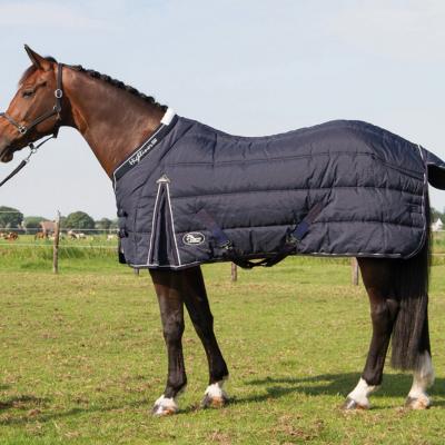 Cobrejão de inverno 500g Black Iris, Harry's Horse