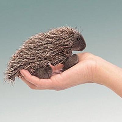 Mini Porco-espinho