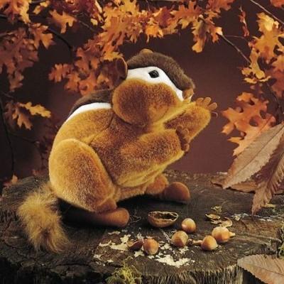 Esquilo (chipmunk)