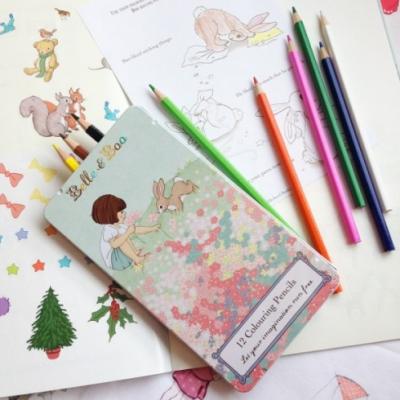 Caixa lápis de cor | Pencils in tin box