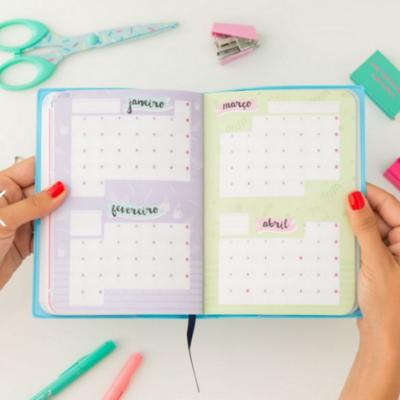Agenda Pequena 2017 | Vista semanal - Este é o meu ano