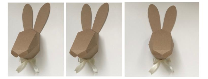 Cabeça de Coelho 3D com laço
