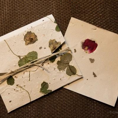Envelope com Trevos naturais em Papel Vivo ou papel semente