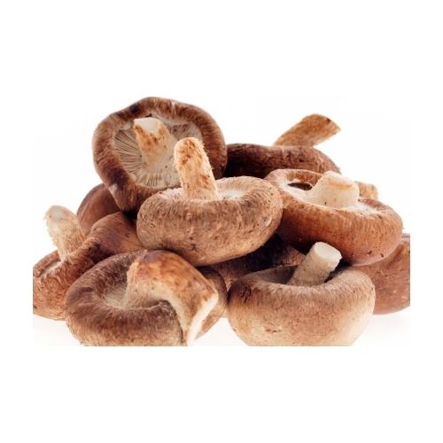 Cogumelos desidratados Lentinula edodes (Shiitake)