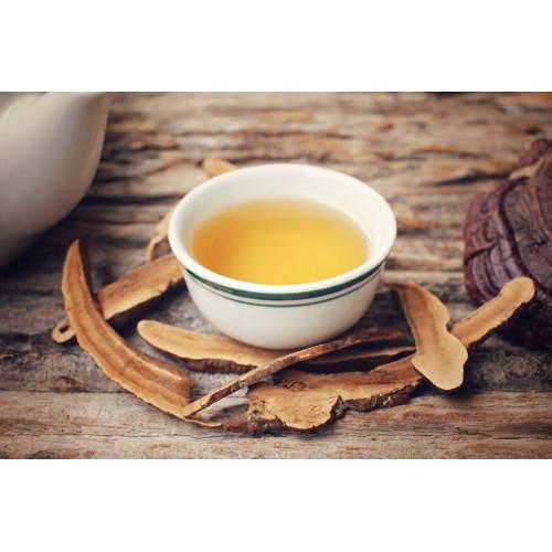 Chá Reishi (Ganoderma lucidum)