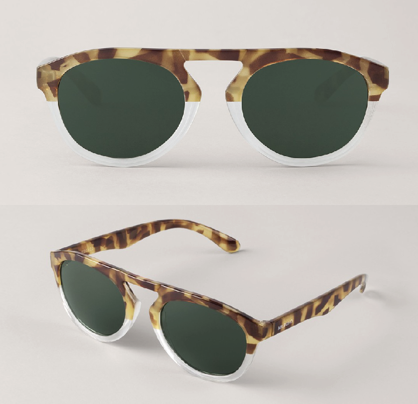 High-Contrast Tortoise/Transparent Wynwood with Classical Lenses