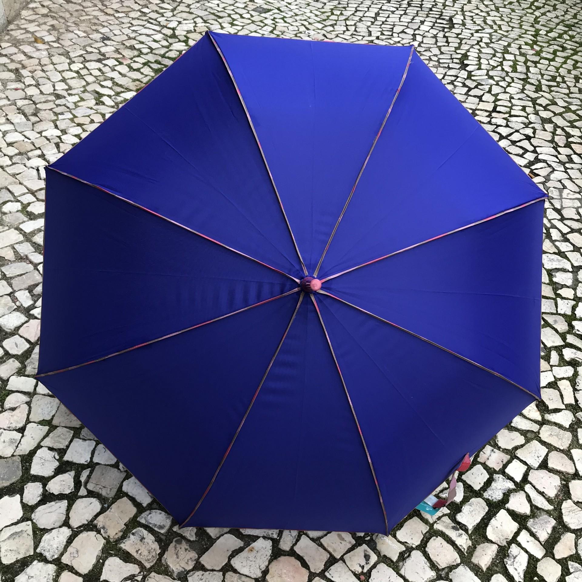 Guarda-Chuva Liso | Azulão