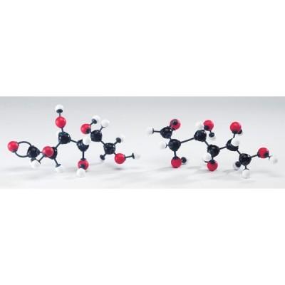 Modelo Molecular de Hidratos de Carbono