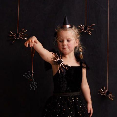 Aranhas Decorativas