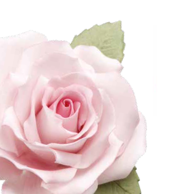Conj. 7 Cortadores Rosa
