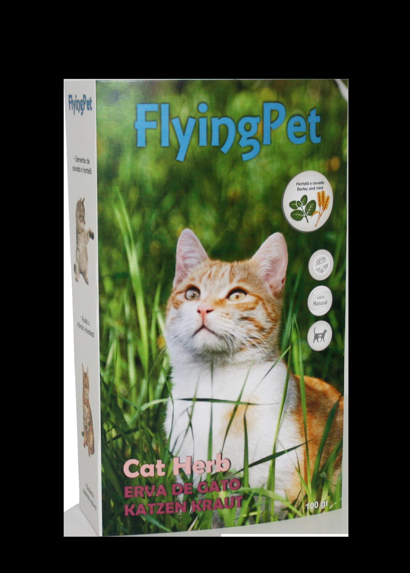 Erva para Gatos - Cat Herb