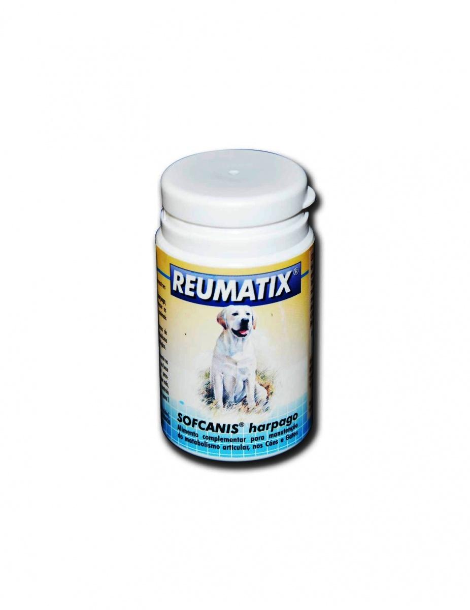 REUMATIX - Suporte nutricional à função articular