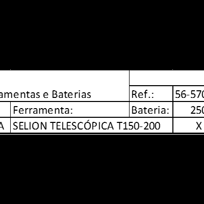 SELION TELESCÓPICA T150-200