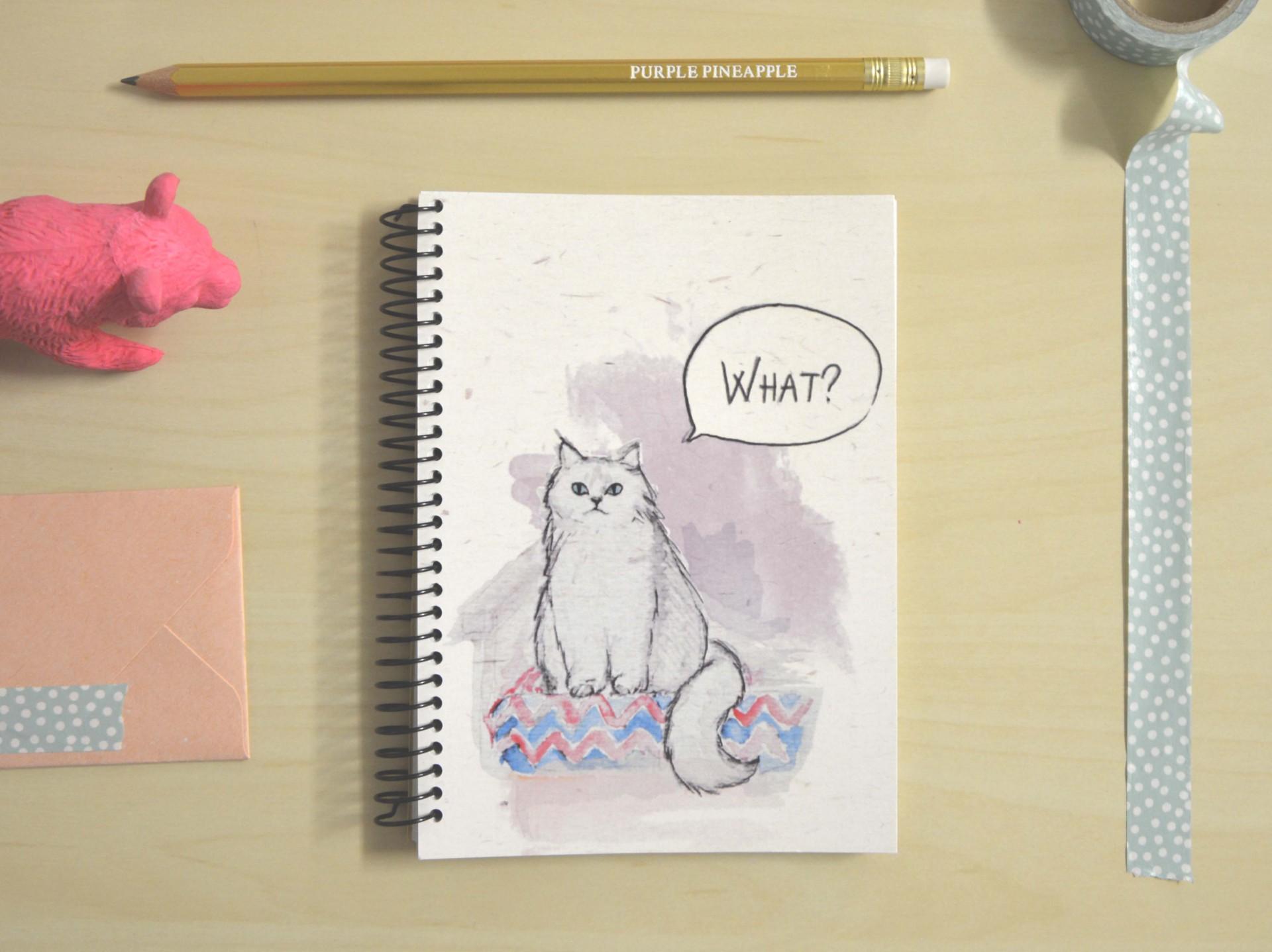 Cat - What?