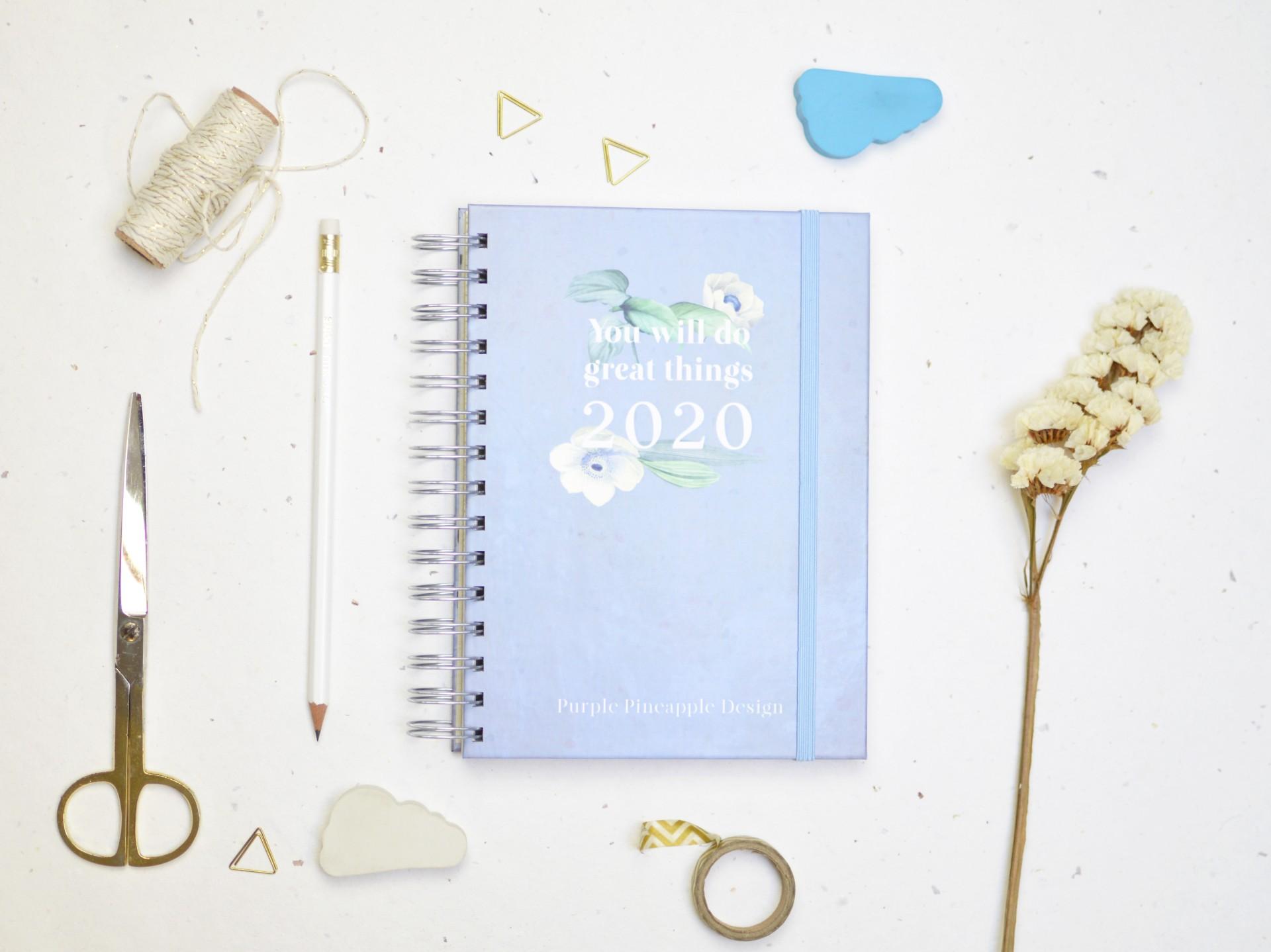 Agenda 20•20 Azul