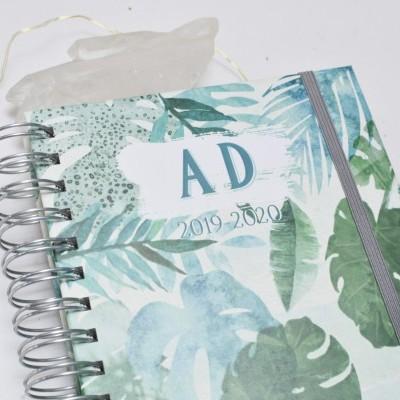 Agenda Tropical