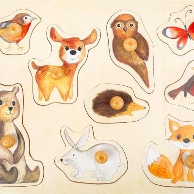 Os Animais da Floresta