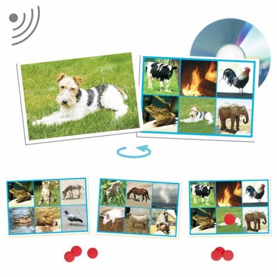 Bingo - 25 sons de animais e da natureza