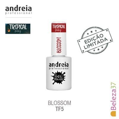 Verniz Gel Andreia TF5 – Blossom (Vermelho)