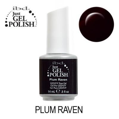 IBD 56506 – Plum Rave