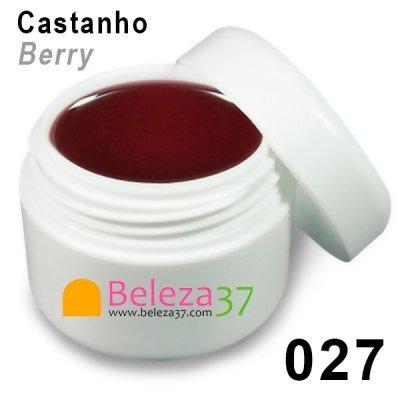 Gel de Cor 027 – Castanho (Berry)
