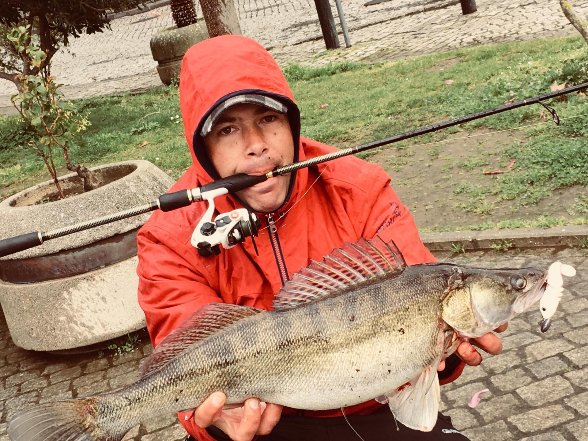 Sabor Pesca