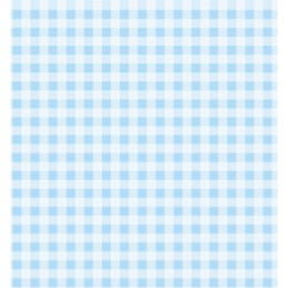 Gingham Blue Small