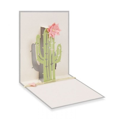 Pop-Up Cactus