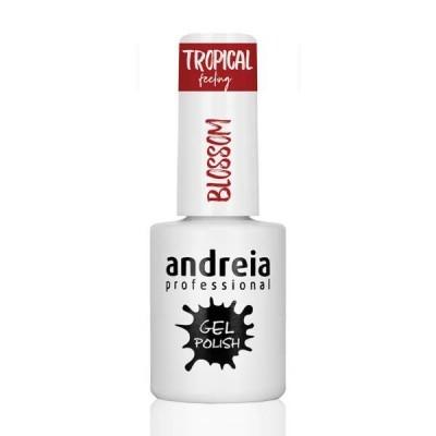 Andreia TF5 - Blossom (Vermelho)