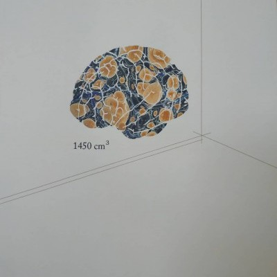 1450cm³