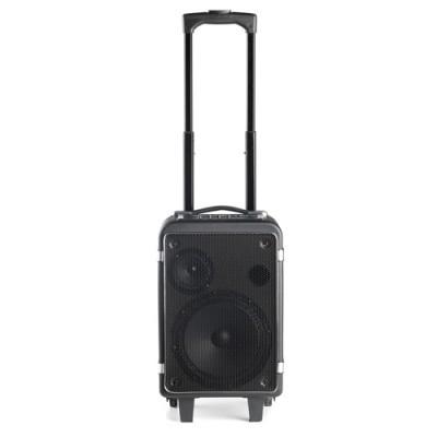 Sistema de Som Portátil Bluetooth (ideal para festas) WILDFUNKY