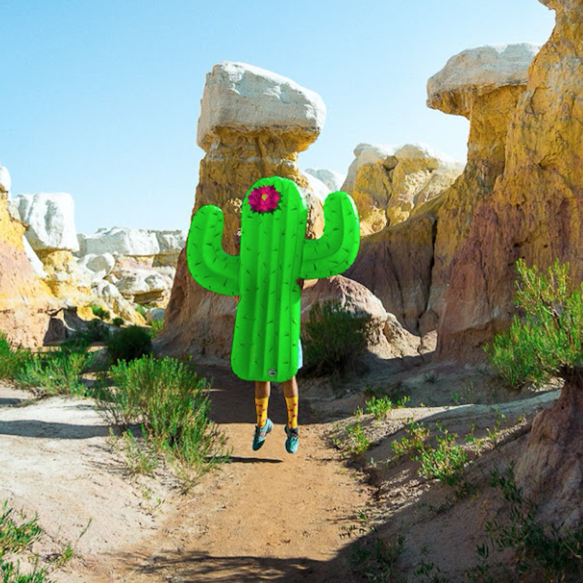 Bóia gigante - CACTO