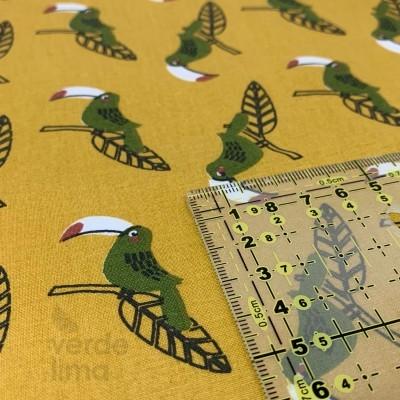 Jungle fun - birds