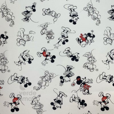 Mickey e Minnie esboço