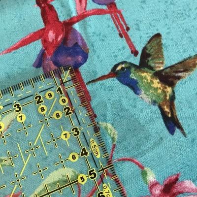 Fuchsias and Hummingbirds