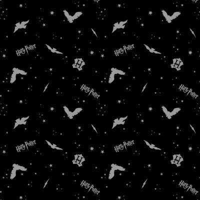Harry Potter - Black In the Night Sky