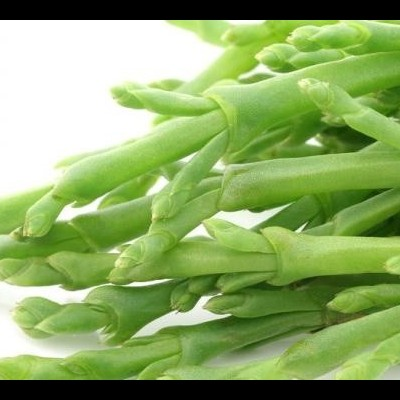 Sal vegetal - Salicórnia 35gr